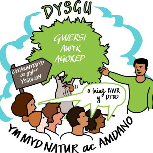 Welsh Ask 1 graphic