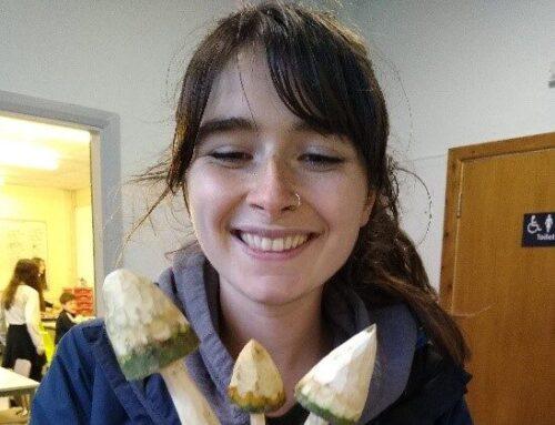 Jade's apprenticeship journey